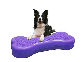 FitPaws K9 Giant Fitbone
